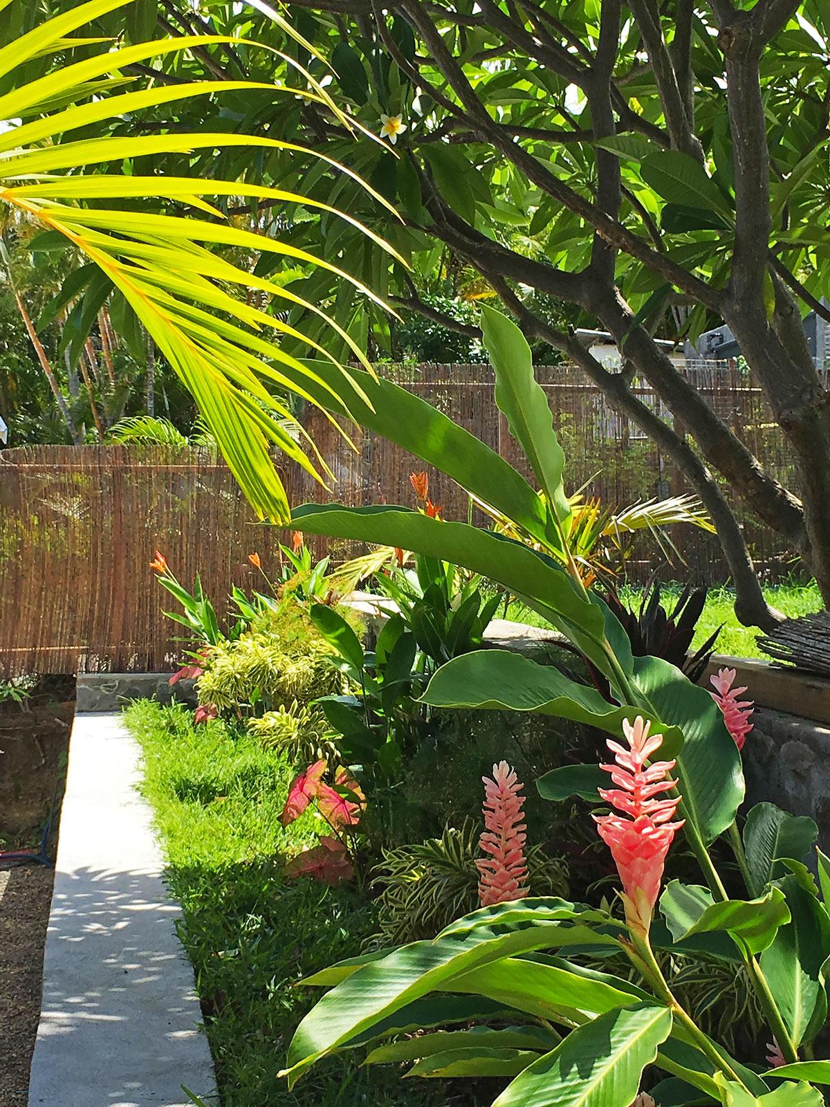 Entretien de jardin et espaces vert sur l 39 le de la r union for Entreprise entretien jardin 974