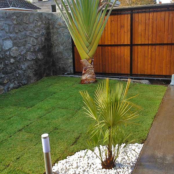 jardin avec galets blancs simple deco jardin avec galets dacco jardin modale de jardin avec. Black Bedroom Furniture Sets. Home Design Ideas
